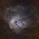 NGC1893 TadPole SHO Hyperstar,                                TimothyTim