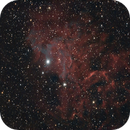 Flaming Star Nebula - 2016/11/24,                                Chappel Astro