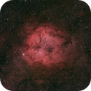IC1396 widefield,                                markleeman