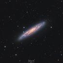 NGC253 Sculptor Galaxy,                                Jonathan Durand
