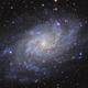 M33 The Triangulum Galaxy - LRGB,                                Zheng Fu