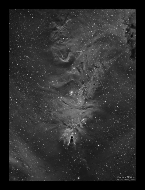 NGC2264 Cone Nebula and Christmas Tree Cluster Ha,                                Göran Nilsson