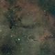 IC 1396 - The Elephant's Trunk Nebula,                                Jason Doyle
