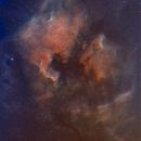 NGC 7000 North American Nebula in Narrowband SHO,                                William Jordan