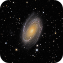Messier 81 - Bodes Nebula - RGB+Ha+OIII (OSC),                                Randy Roy