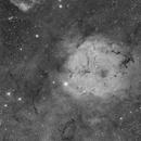 IC1396 & VDB142,                                S. DAVID