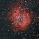 Rosette Nebula,                                Keld Henningsen