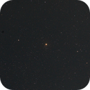 Garnet Star,                                Terrel_D
