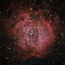 Rosette nebula,                                Marek Szymonski