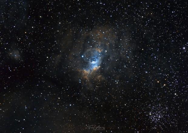 Bubble Nebula,                                Terry Adrian