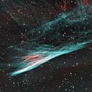 NGC 2736 Pencil Nebula,                                Anne-Maree McComb