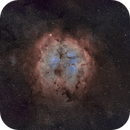 A wider view at IC 1396 with the Elephant Trunk,                                Benny Colyn