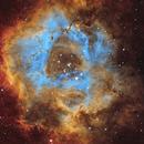 Rosette Nebula - SHO,                                Peter Komatović