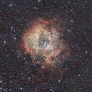 C49 Nebulosa Rosetta,                                Andrea Pistocchini - pisto92