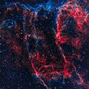 IC 1340 The Bat Nebula,                                Dale A Chamberlain