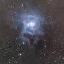 Iris Nebula,                                Nicole Mortillaro