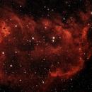 IC 1848 Soul Nebula,                                John Richards