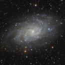 "M 33 - The Triangulum Galaxy,                                Sebastian ""BastiH..."