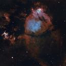 Fish Head Nebula,                                RPrevost