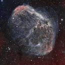Cresent Nebula,                                Christopher Maier