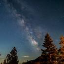 Milky Way over pine Trees (Tahoe),                                Kapil K.