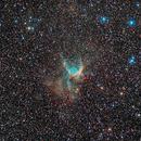 NGC2359 Thors Helmet.,                                Richard Coggins