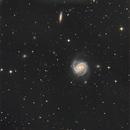 M100,                                Seymore Stars
