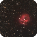 IC5146,                                JY