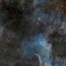 NGC7000 NORTH AMERICA NEBULA,                                Albert  Christensen