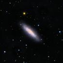 NGC 6503,                                David Andra