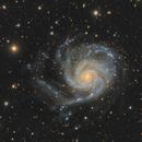 M101 - The Pinwheel Galaxy,                                Almos Balasi