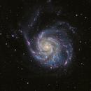 M101 - A Colorful Pinwheel,                                John Hayes