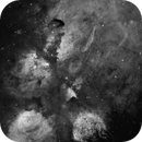 NGC6334 and the Cat's Paw Nebula for the love of Ha,                                TWFowler