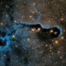 The Elephant's Trunk Nebula,                                Stefan Böckler