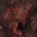 NGC 7000 North America Nebula,                                herwig_p