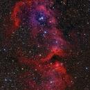 Soul Nebula Mosaic,                                Mark Holbrook