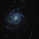 M101 - Pinwheel-Galaxy,                                Hermann Dresen