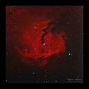 The Seagull Nebula Sh2-292 / IC2177,                                Göran Nilsson