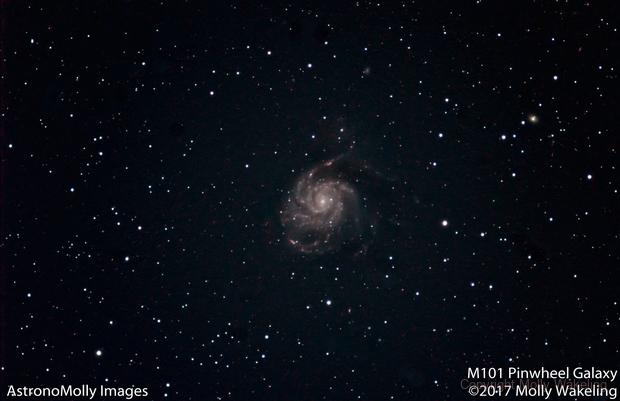 M101 #4,                                Molly Wakeling