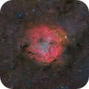 IC 1396 Widefield Hybrid Image,                                Paddy Gilliland