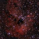 Tadpole Nebula,                                muthunag