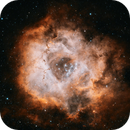 The Rosetta Nebula (Caldwell 49),                                George Clayton Yendrey
