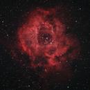 Rosette Nebula,                                Grzegorz Łysik
