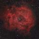 Rosette Nebula,                                David F