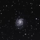M101 v2 81mm, No Filter, 50 minutes, Bortle 9,                                psychwolf