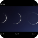 Venus Crescent Ring 2020,                                Sebastian Voltmer