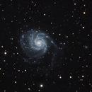 M101 the pinwheel galaxy,                                Michael Halliday