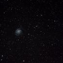 M101,                                Steph