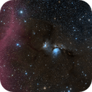 M 78 and Barnard's Loop,                                Alex Roberts