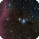 M 78 and Barnard's Loop,                                Alex Roberts